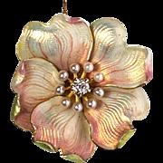 Art Nouveau Enamel Dogwood Flower brooch