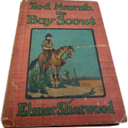 Vintage boy scout book Ted Marsh the boy scout hard cover