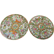 Two  circa 1890 Rose Medallian 6 inch plates in mint condition