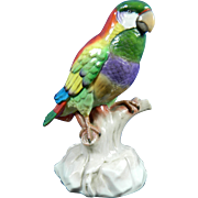 Vintage Hand Painted Capodimonte Porcelain Figurine of a Parrot – Italy 20th Century