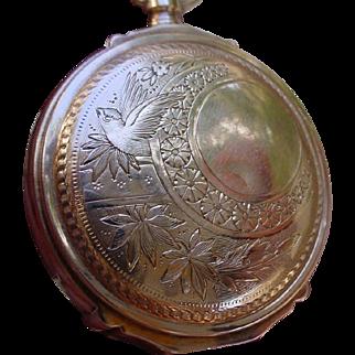 Beautiful Antique 14K Gold Hunter Cased w/ Box Hinge, Richly Engraved Elgin Pocket Watch