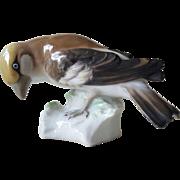 Karl Ens Germany Bird Figurine