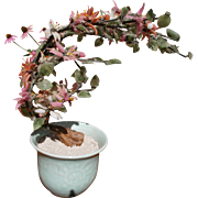 "Vintage Chinese Carved Jade and Hardstone ""Ming Tree"" in Celadon Porcelain Cachepot"