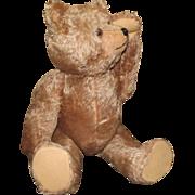 Schuco Yes / No Bear