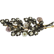 Early Victorian Old Cut Diamond and Natural Pearl Brooch