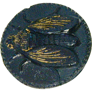 Vintage Fly on Black Glass Button