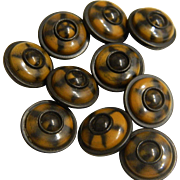 Set of Ten Medium Vintage Brown and Black Celluloid Buttons