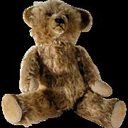 Early 20th Century Mohair Teddy Bear