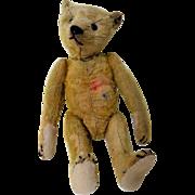 Early 20th C. Steiff Mohair Teddy Bear 1906-1943