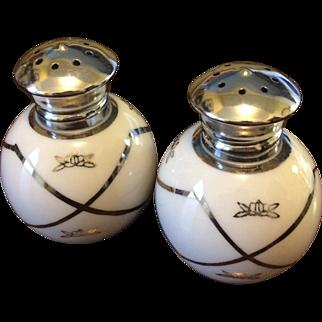 Irice Salt and Pepper Shaker Set