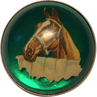 Vintage Brooch, Horse under Glass in Sterling Silver Setting