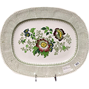 """17"""" Oval Serving Platter in Paynsley Green Multicolor by Mason's Ironstone"""