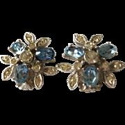 Ora Rhinestone and Blue Stone Earrings Clip
