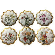 Limoges Porcelain Plates Hand Painted Flowers Set of 6 1880's
