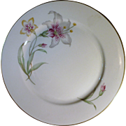 Rosenthal Selb Set of Luncheon Plates Orchids Set of 6
