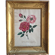 French 19th century Pink Roses and Poetry Gouache