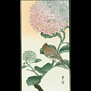 Yoshimoto Gesso - Sparrow and Hydrangea - Japanese Woodblock Print