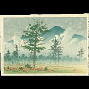 Kawase Hasui - Senjo Plain, Nikko - First Edition Japanese Woodblock Print