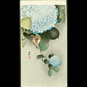 Ohara Koson - Sparrow on Hortensia - Japanese Woodblock Print