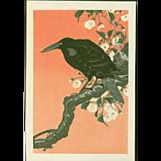 Ohara Koson - Crow and Cherry - Japanese Woodblock Print