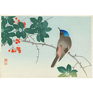 Ito Sozan - Blueheaded Bird On Nanten Tree - Japanese Woodblock Print