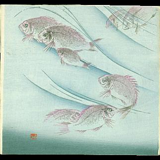 Japanese Woodblock Print - Eight Fish