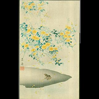 Yosai Kikuchi - Frog and Yellow Flowers - Japanese Woodblock Print - Rare