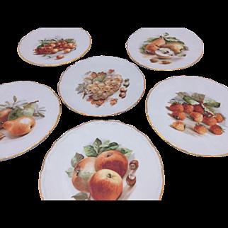 Bavarian China Plates with Fruit Motif Set of 6