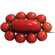 Early Victorian Coral Mourning Pin/Brooch