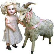 Rare Antique goat big size 1880 years
