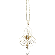 Antique Art Nouveau Edwardian 9K Gold, Natural Seed and Baroque Pearl, and Diamond Lavalier Necklace