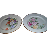A Set of 2 Beautiful Tressemann & Vogt Limoges France Plates