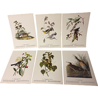 Set of 6 Audubon Bird Prints from 1940s