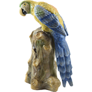 Early Mark Capodimonte Antique Porcelain Bird Parrot Figure Statue Turn of Century
