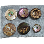 Six Antique Carved Engraved Inlaid Shell Buttons Birds on Nest Paisley Art Nouveau