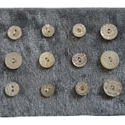 """A Card of 12 Antique Victorian Small Carved Mother of Pearl Buttons  5/16"""" to 7/16"""""""