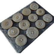 """A Card of 12 Antique Victorian Carved Mother of Pearl Buttons 1"""" to 1 3/16"""""""