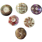 "Six Antique Victorian Dyed Carved Engraved Gilded Mother of Pearl Buttons 7/8"" to 1 1/16"""