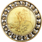 Large Antique Victorian Openwork Metal Celluloid Composition Button with Dried Grass Inlay 1 7/16""
