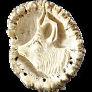 "X-Large Antique Carved Antler Stag Deer Horn Button Roebuck 2 7/16"""