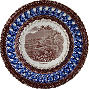 """Villeroy & Boch """" Johannisberg """" Transferware Plate , Very Old"""