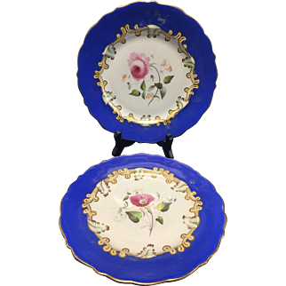 Pair of Vintage hand painted porcelain plates with flowers