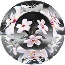 Caithness Glass experimental three pink cherry blossoms magnum faceted glass paperweight.
