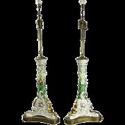 Pair of Antique Meissen School Hand Painted Foliate Porcelain Table Lamps
