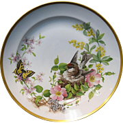 "Kaiser Floralie 12"" Porcelain Gold Rimmed Plate Bird in Nest w/Butterfly Germany"