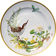 "Kaiser Floralie 12"" Porcelain Gold Rimmed Plate Bird w/Dragon Fly W Germany"