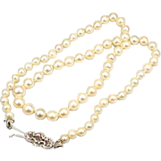 Necklace Akoya pearls, 18K fastening, rose sapphire.