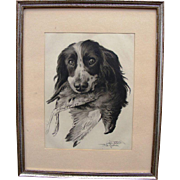 Lithography -  hunting dog