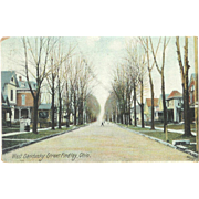 OH Findley 1900s West Sandusky Victorian Houses Neighborhood Postcard