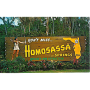 FL Homosassa Springs Indian Maiden Roadside Attraction Florida Map Postcard 60s